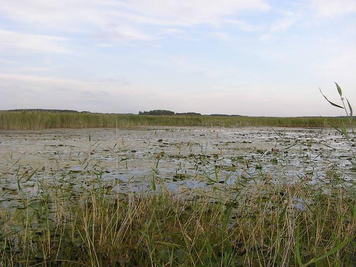 рыбалка в новосибирской области озеро круглое