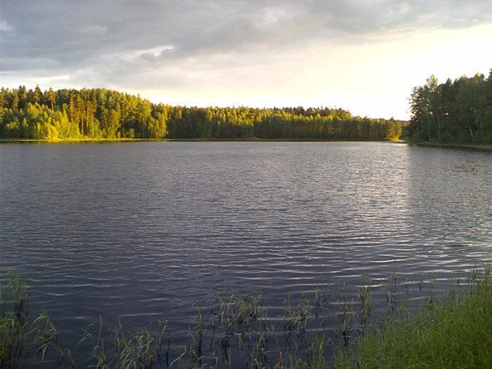 озера новгородской области рыбалка