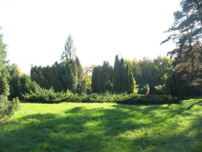 Ботанический сад нижнего новгорода фото