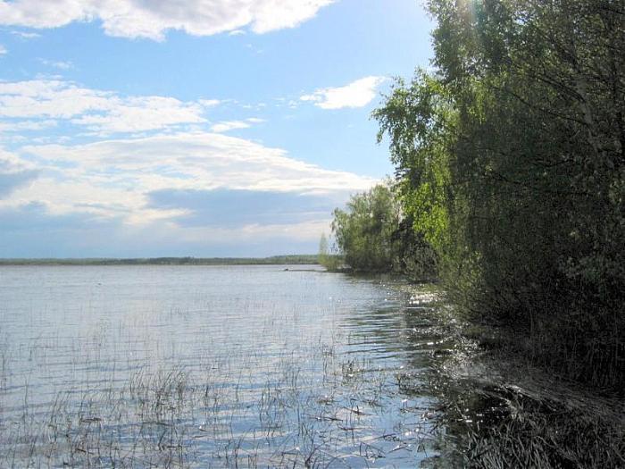 лубенское озеро ленинградская область рыбалка