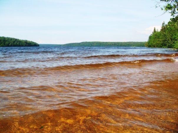 белое озеро ленинградская область рыбалка