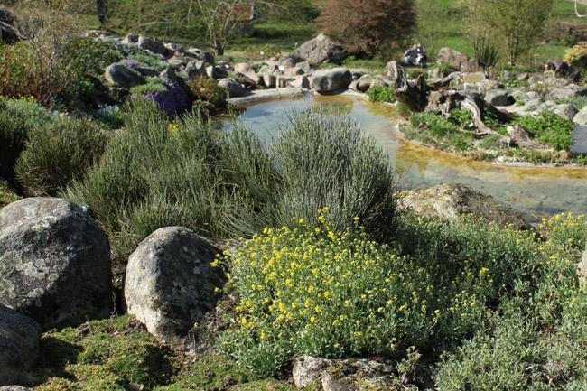 Jardin Botanique Du Montet Villers Les Nancy