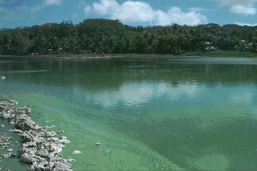 Buada Lagoon #