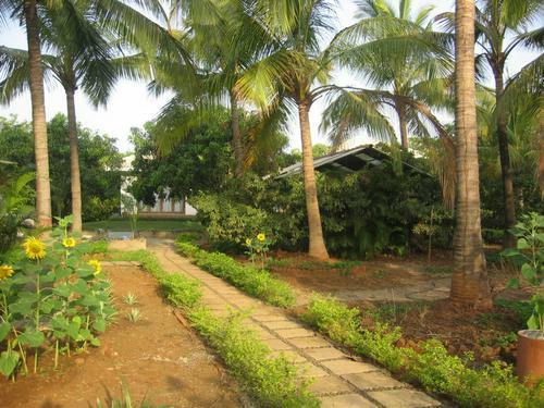 Mayur Dobariya Farm House