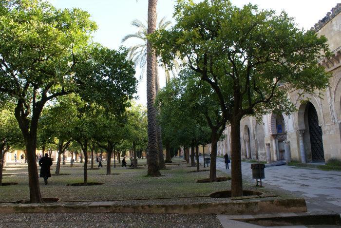 Courtyard of the Orange Trees (Patio de los Naranjos ...