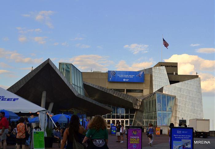 Massachusetts Public Aquarium : public aquarium / oceanarium / seaquarium Add category