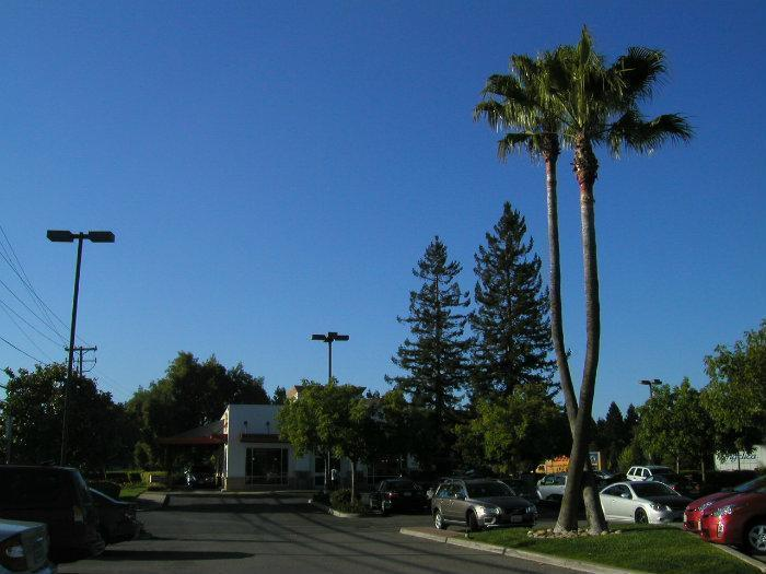 Fast Food Places In Fremont Ca