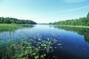Карта Озеро Шлино