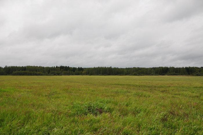 Дачный поселок «Огниково-1»