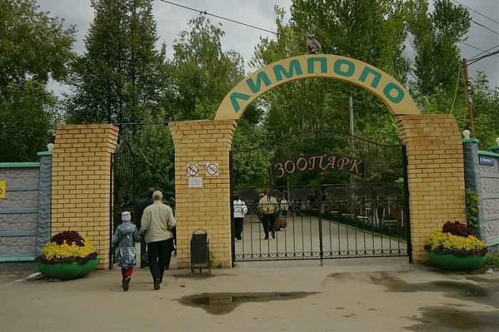 Городская больница 7 дзержинск официальный сайт