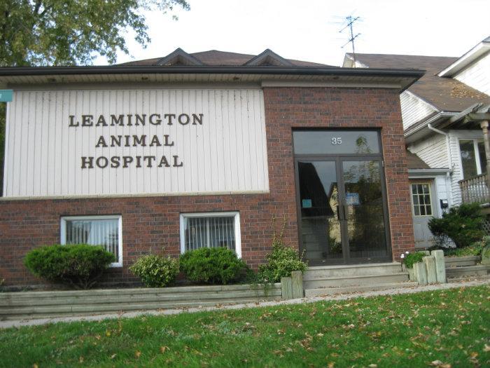 west essex animal hospital