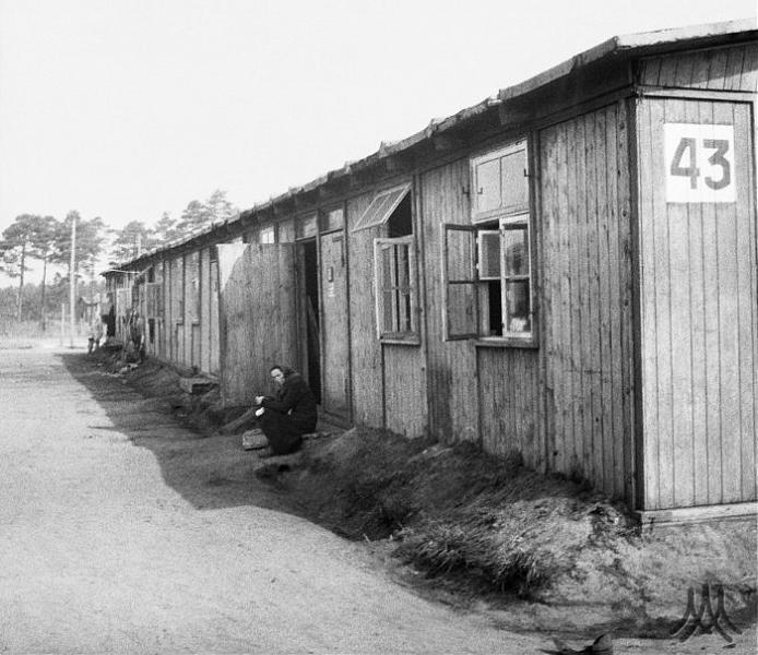 96 best Bergen Belsen images on Pinterest   Bergen, World