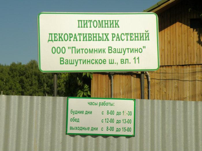 Дмитровское шоссе рассада 46