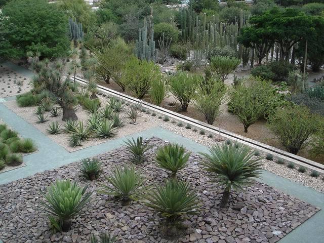 Jard n etnobot nico de oaxaca oaxaca de ju rez for Jardin etnobotanico oaxaca
