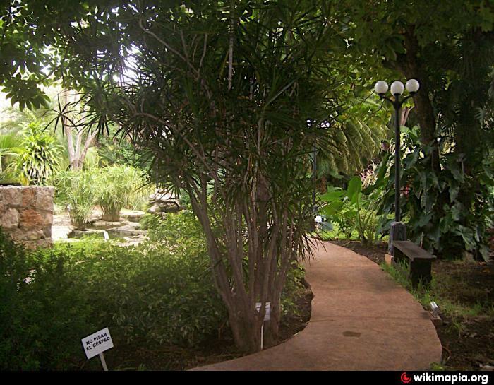 Jardin botanico xmuch halt n baluarte de santiago campeche for Jardin botanico xmuch haltun