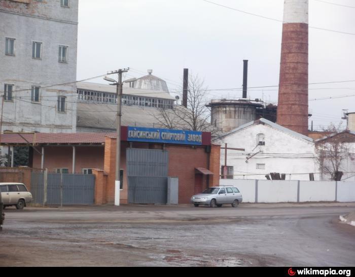 Alex mishchenko by