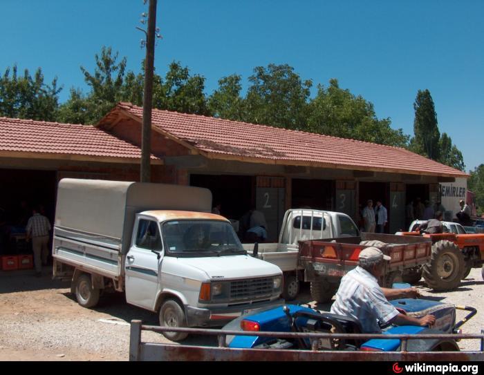 Durak Köyü Kiraz Hali , bursa