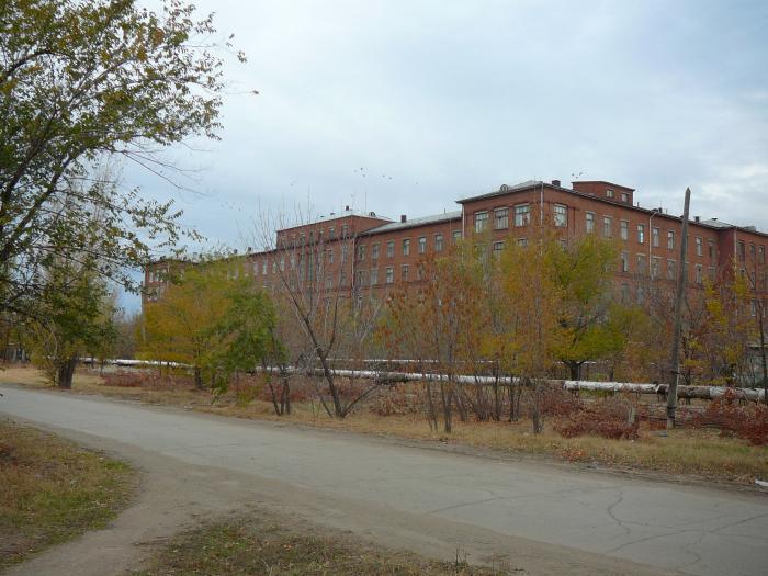 Поликлиники приморского района санкт-петербурга 49