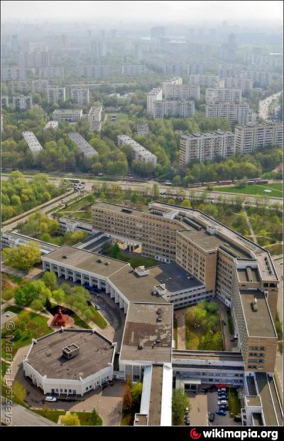 Медицинский центр на сполохи 7 мурманск официальный сайт
