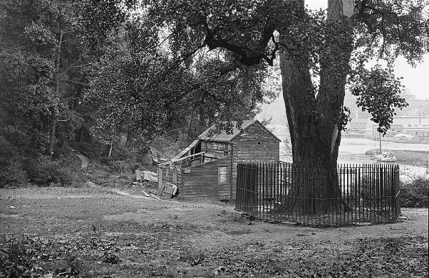 inwood hill park ny