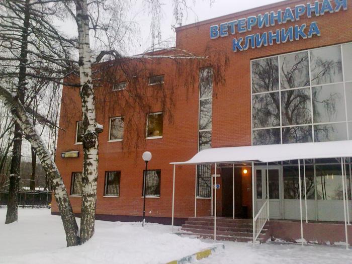 Телефон 2 детской поликлиники на орловской