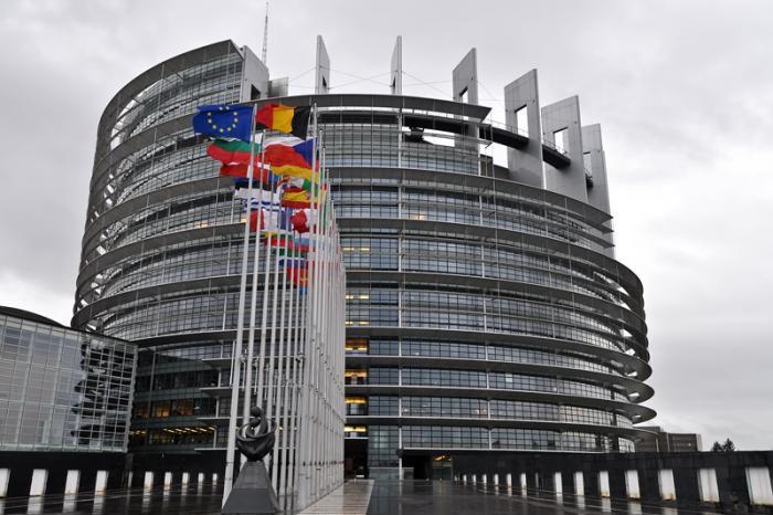 欧州議会(ルイーズ・ウェイス・...