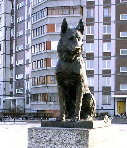 Город тольятти памятник собаке памятники великого новгорода фото