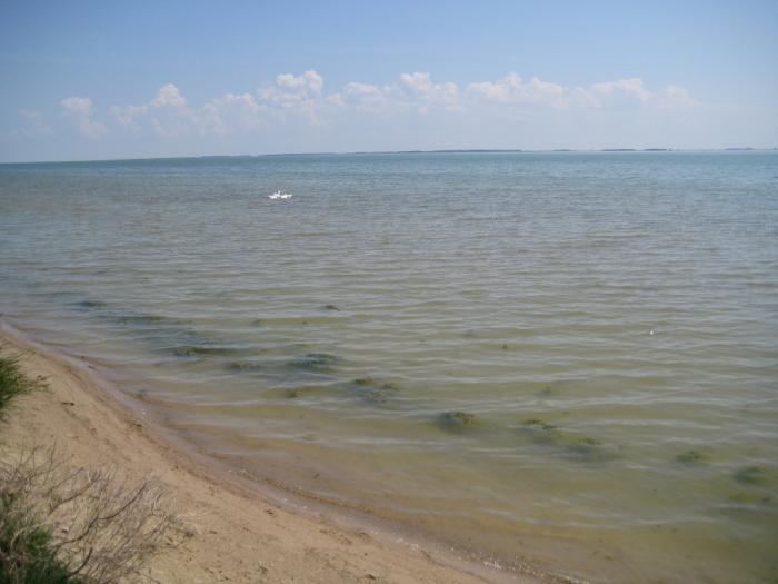 озеро яркуль рыбалка