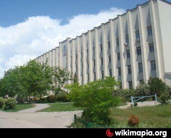 Архангельск ветеринарная клиника