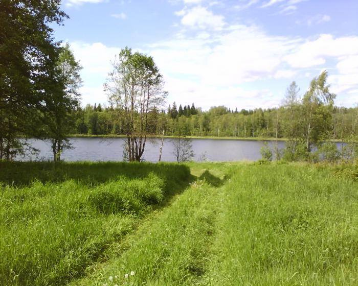 озеро кривское рыбалка видео