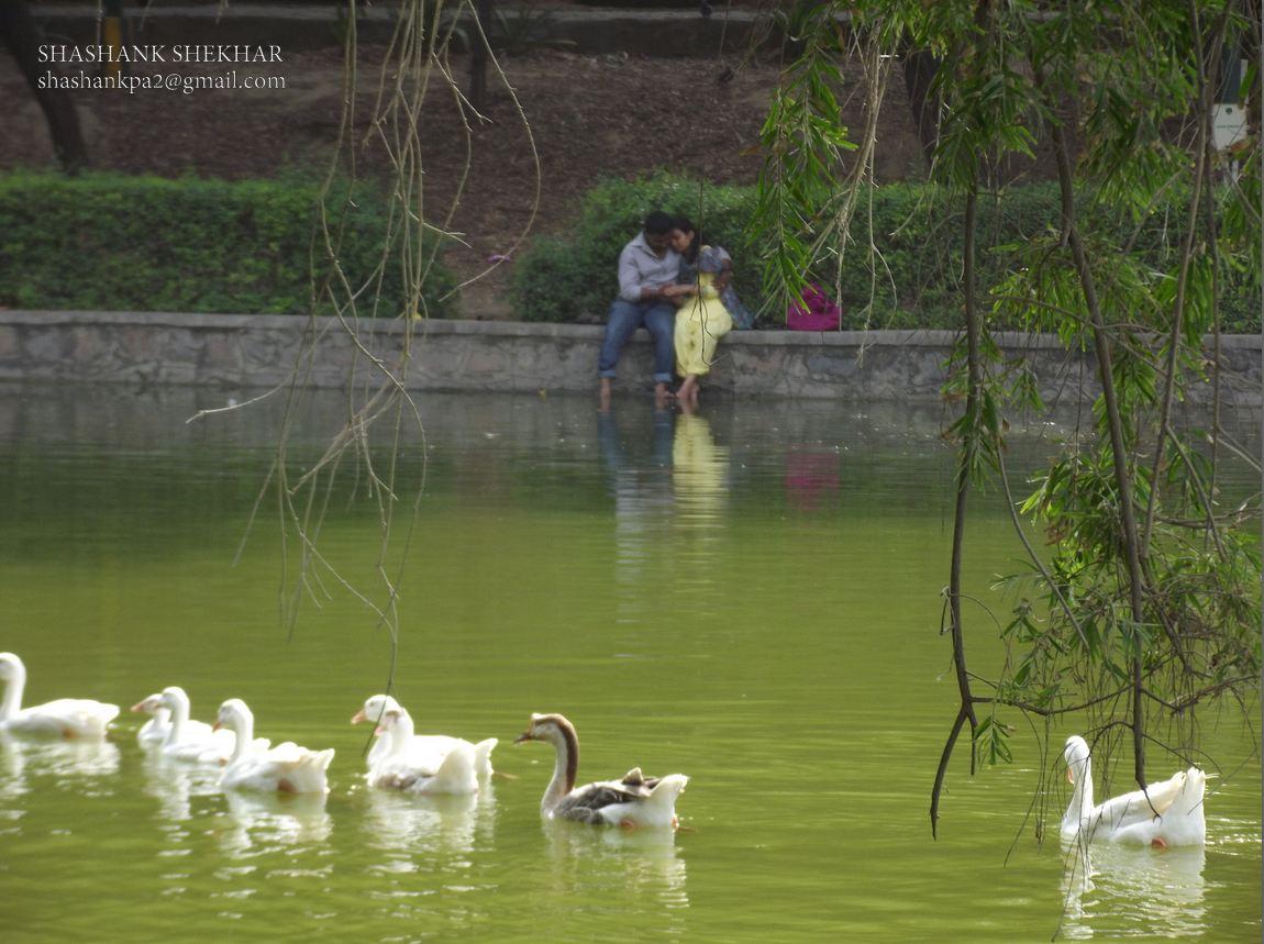 Athpula Lakelodhi Garden Delhi