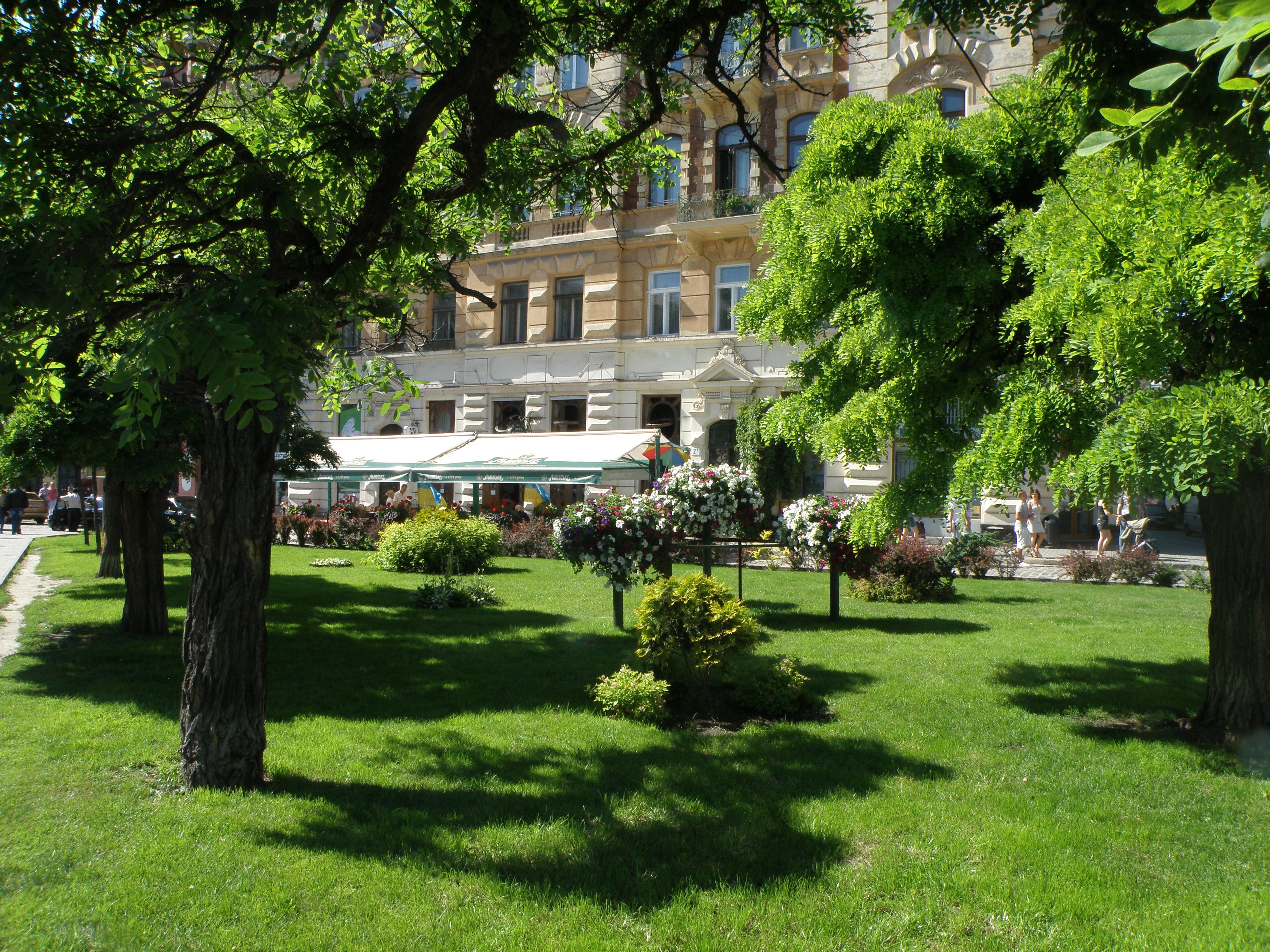 Екологи міста промоніторили 500 зелених насаджень
