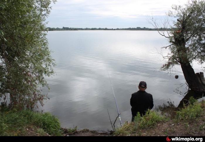 озеро долгое рыбалка рязань