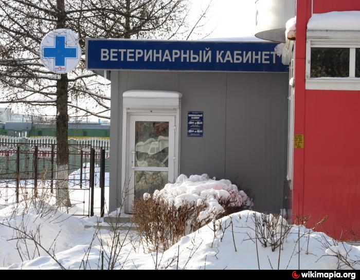 Расписание врачей детской поликлиники 4 в набережных челнах