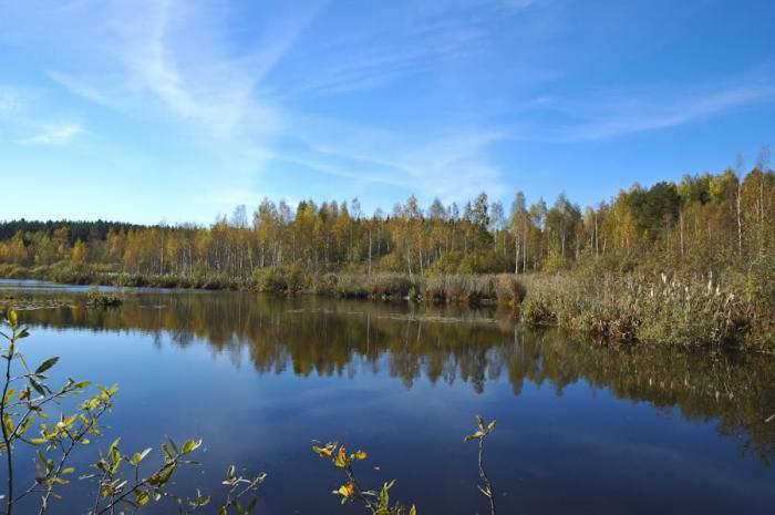 озеро васино солнечногорского района рыбалка