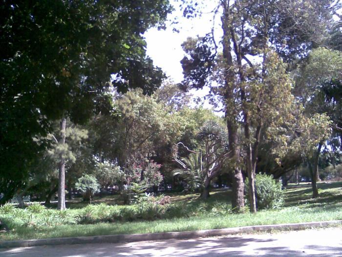 10301 jardin nouzhat hassan triangle de vue rabat par for Au jardin des gourmets