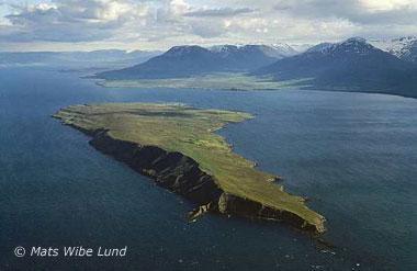 Wyspa Hrisey czyli perła fjordu Eyjafjörður
