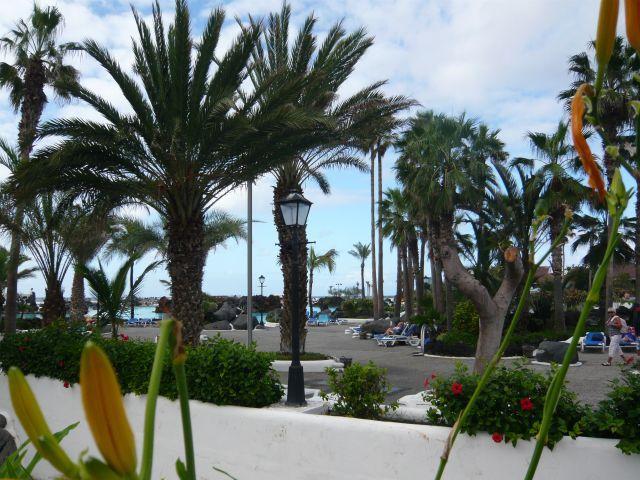 Complejo tur stico municipal costa de marti nez puerto for Piscina municipal puerto de la cruz