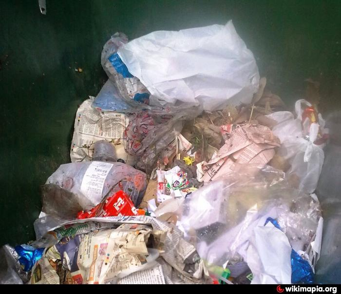 garbage menace in our locality essay To the hon'ble mayor/the chairman, re: mosquito menace in the locality dear sir, i, as president of the local zonal committee, take the privilege of bringing to.