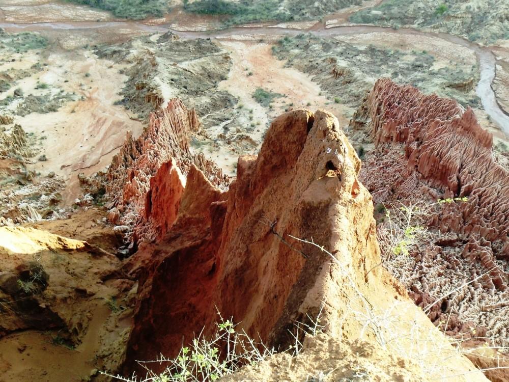 ツィンギ・デ・ベマラ厳正自然保護区の画像 p1_32