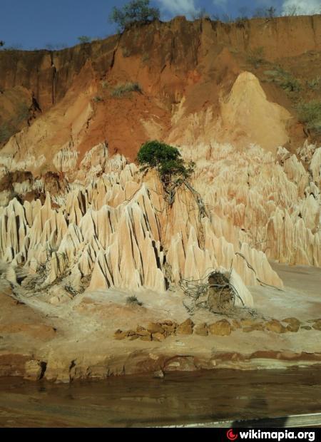 ツィンギ・デ・ベマラ厳正自然保護区の画像 p1_11