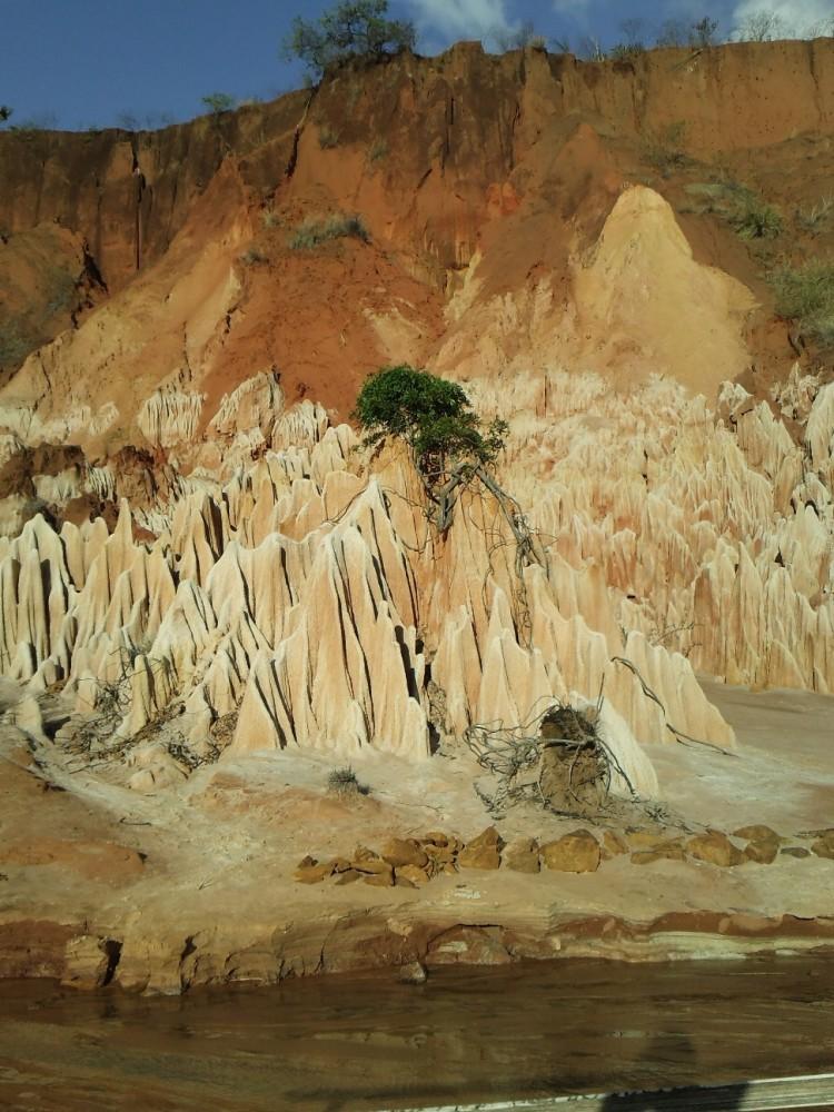 ツィンギ・デ・ベマラ厳正自然保護区の画像 p1_35