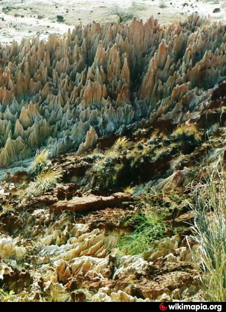 ツィンギ・デ・ベマラ厳正自然保護区の画像 p1_1
