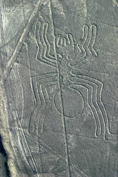 Nazca Geoglyph - The Spider