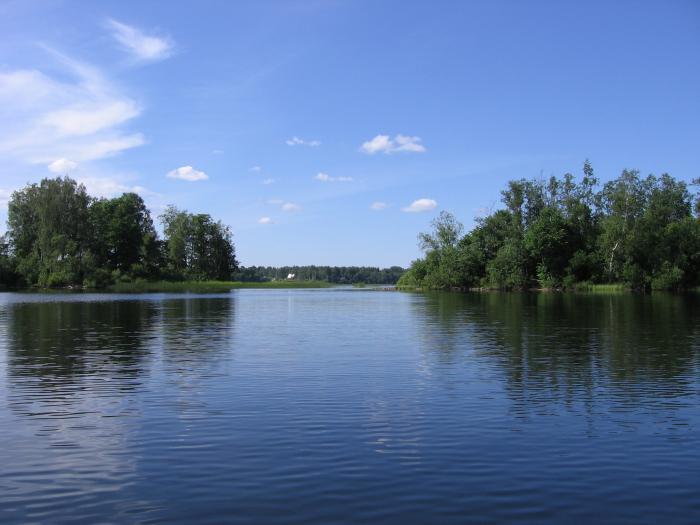 Озеро городновское рыбалка - 0a542
