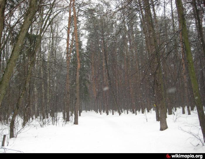 Чоботовский лес - Москва 5dc804f630b13