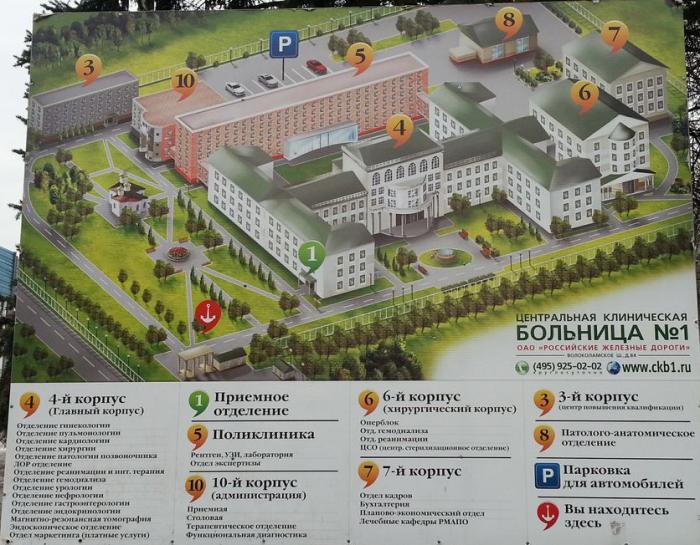 45 поликлиника московского района