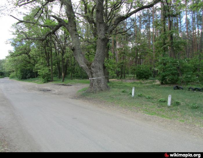 http://photos.wikimapia.org/p/00/03/29/59/79_big.jpg