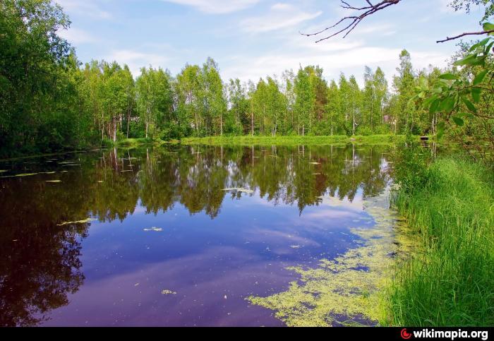 гупуярви озеро рыбалка