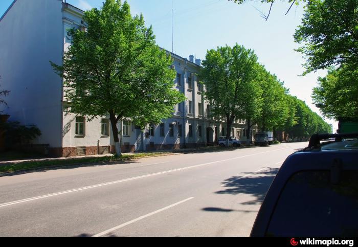 дежурный гибдд санкт петербурга: